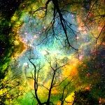 cosmicwonder2