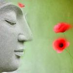 peacefulattitude