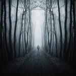 light at the end of the forest - Fear